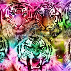 Digiprintti trikoo Rainbow Tigers