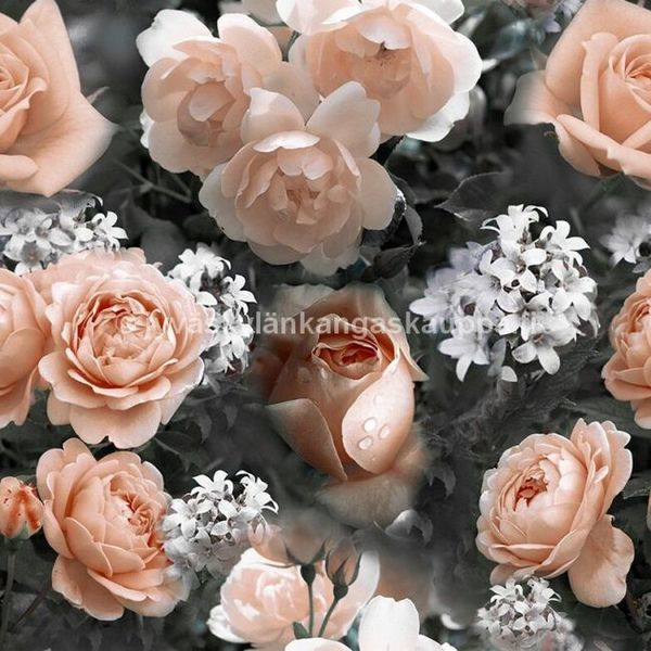 Digiprintti trikoo Peach Roses